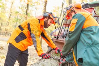 Zwei Waldarbeiter beim Baumrücken im Wald