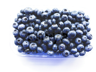 Fresh Blueberries Straight from the Farmers Market