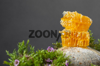 Honeycombs and floral honey on a dark gray background. Horizontal photography with negative space.