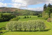 Landscape near of Blair Castle in Scotland