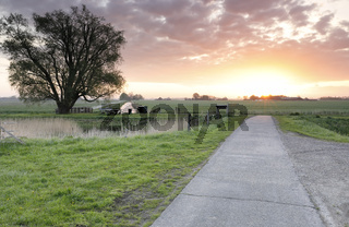 countryside cycling road at sunrise