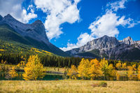 Natural Park near Canmore, Canada