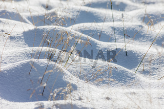 Snowy meadows and dry grasses