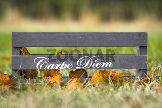 Wooden box with the phrase Carpe Diem