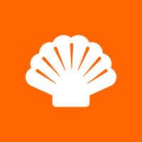 Muschel und Hintergrund - Shell and background