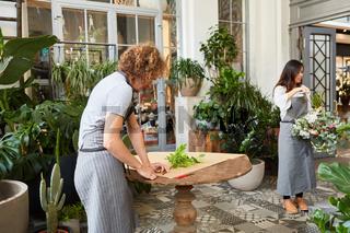 Floristen bei der Arbeit zwischen grünen Pflanzen