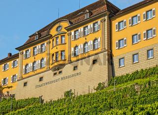 Gebäude Staatsweingut Meersburg
