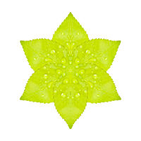 Artificial Green Flower Isolated Artwork