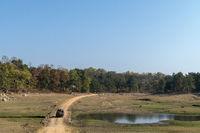 Landscape, Pench, Madhya Pradesh, India