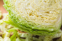 Raw White Cabbage