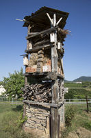 a fanciful tower eco guesthouse for insects