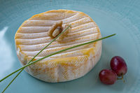 French soft cheese with red smear bacteria from the Vosges