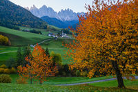 Autumn daybreak Santa Magdalena famous Italy Dolomites village view in front of the Geisler or Odle Dolomites mountain rocks. Picturesque traveling and countryside beauty concept background.