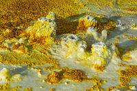 Fumaroles in sulphurous sediments, geothermal field of Dallol, Danakil depression, Ethiopia