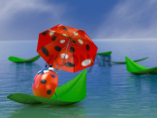 Ladybug with umbrella
