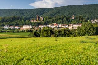 Blick auf den Ort Neckarsteinach im Neckartal, Baden-Württemberg, Deutschland