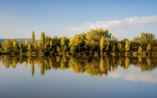 Reflection of autumn foliage in a lake