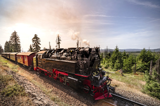 Steam locomotive driving through beautiful nature