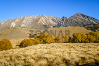 Mountain fields landscape in New Zealand