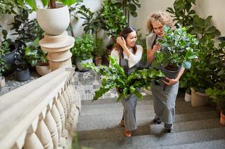 Floristen liefern Grünpflanzen als Deko für ein Event