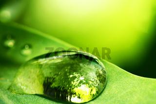 natural waterdrop