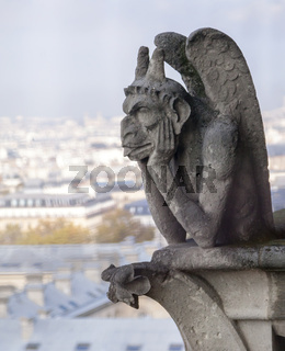 Chimera on Notre Dame de Paris