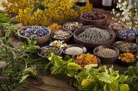 Herbal medicine on wooden desk background