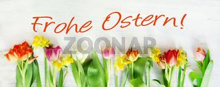 Ostern, Frohe Ostern, Osterkarte mit Tulpen und Osterglocken, Banner, Header, Headline, Panorama