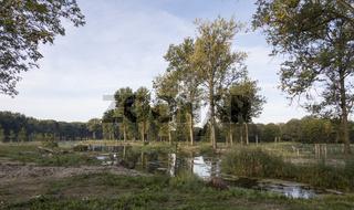 Isar Altwasser