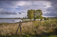 Geltinger Birk nature reserve in Schleswig-Holstein