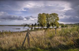 Naturschutzgebiet Geltinger Birk in Schleswig-Holstein