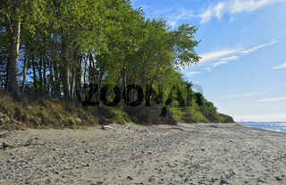 strand von gross schwansee