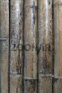 Getrockneter Bambus als Hintergrund
