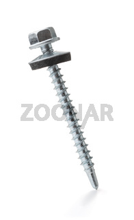Front view of single roofing screw