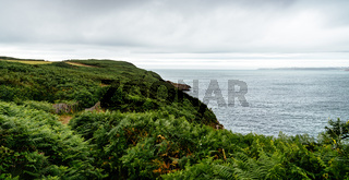 Scenic view of the coast with green ferns against cloudy sky