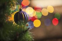 Christmas decoration with fir branches and lights