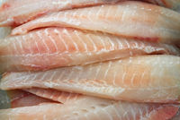 Fresh tilapia fish fillet in the market