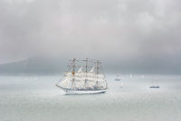 Sailing Ships in the Sea