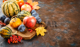 Autumn harvest stll life