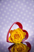 Heaty, Love, Romantic Celebration Of Valentine's Day