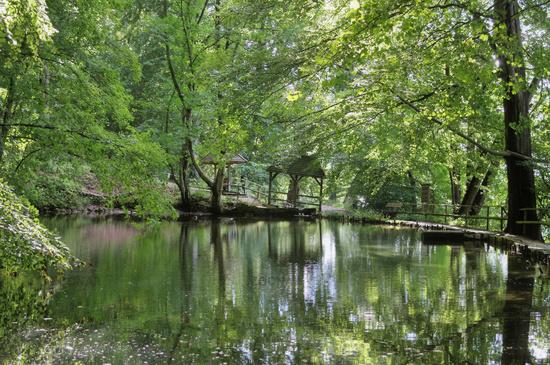 historic fish-farming ponds in Forest of Malente called Spiegelteiche,Holstein Switzerland,Germany