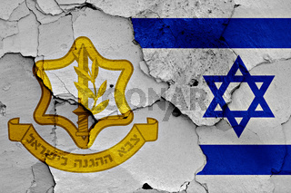 flags of Israel Defense Forces and Israel painted on cracked wall