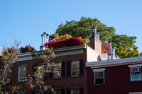 Fall foliage color of Greenwich Village in Lower Manhattan