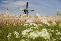 Old windmill, Kinderdijk in netherlands
