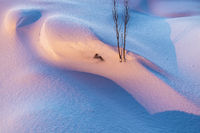 Snow formations, Soeroeya Island, Finnmark, Norway