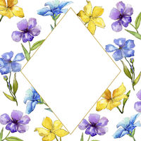 Watercolor colorful flax flowers. Floral botanical flower. Frame border ornament square.