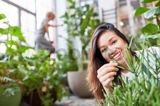 Lächelnde junge Floristin bei der Pflanzenpflege