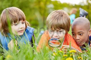Kinder betrachten Natur mit der Lupe