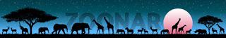 Animals in the wild savannah at sunrise