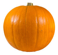 Isolated Pumpkin For Halloween